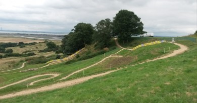 Hadleigh Park_overview