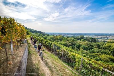 Landschaft beim Odenwald Bike Marathon © Armin M. Küstenbrück